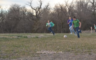 A Lively Round of Soccer