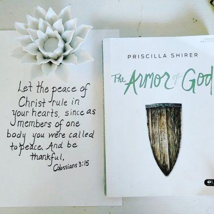 Armor of God 6
