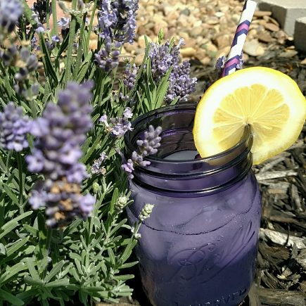 Purple Jars and Lemonade