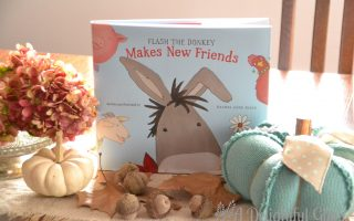 Flash the Donkey Makes New Friends Giveaway