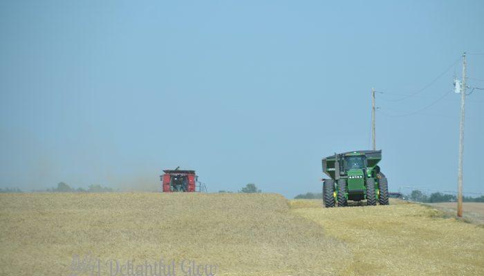 On Harvest